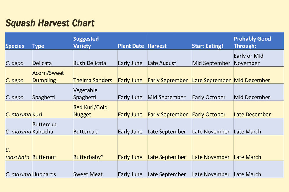 Squash Harvest chart.jpg