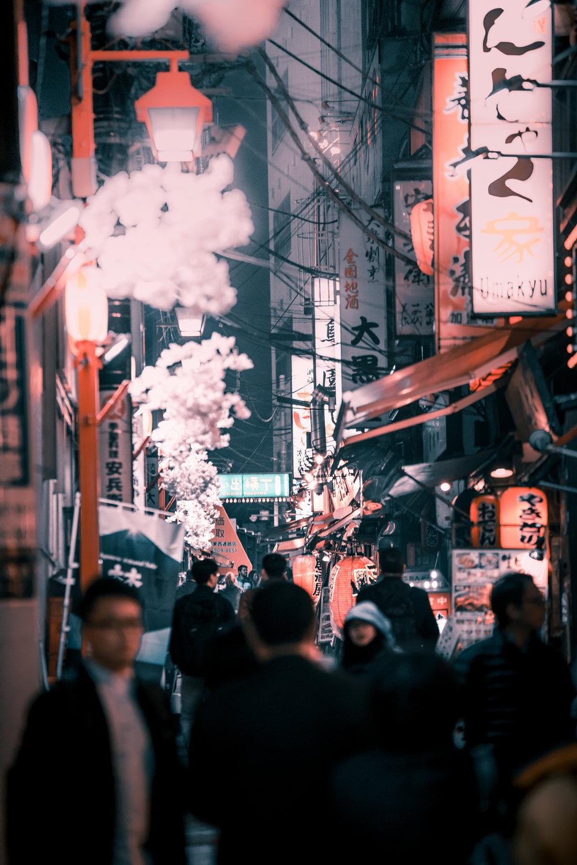 japand3-12.jpg