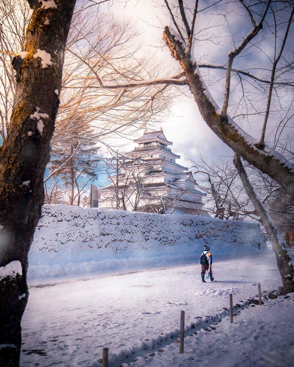 Beautiful in white - Tsuruga Castle