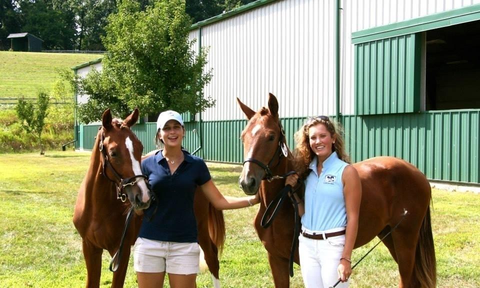 Scarlett Hill Farm Future Event Horse FEH USEA