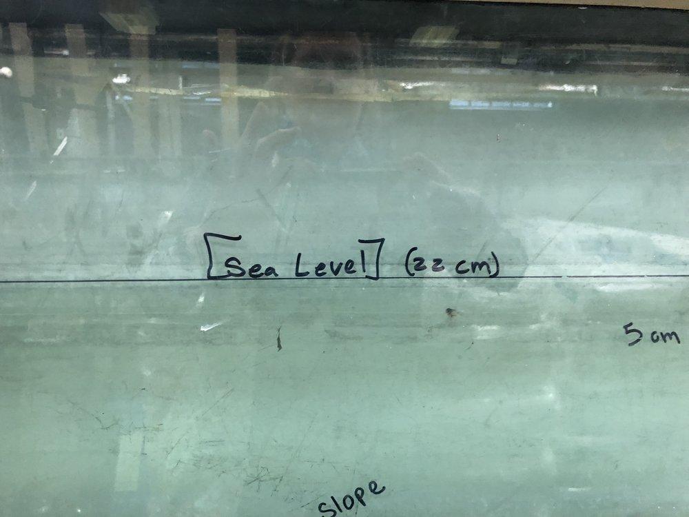 Sea_Level.jpg