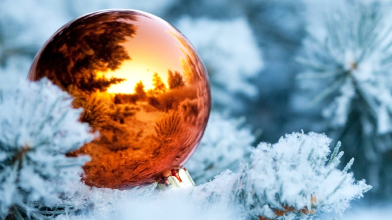 winter_branches_snow_spruce_tree_ball_christmas_decorations_reflection_new_year_76497_3840x2160.jpg