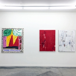 FEEDBACK OF DEISRE  TED GAHL, SHARA HUGHES, CHRISTOPH ROSSNER JANUARY 15 - FEBRUARY 20, 2016