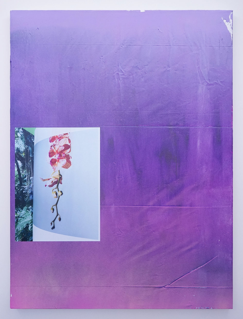 "FACUNDO ARGAÑARAZ   Untitled (FA03-17) , acrylic and pigment print on canvas, 48"" x 36"", 2016"