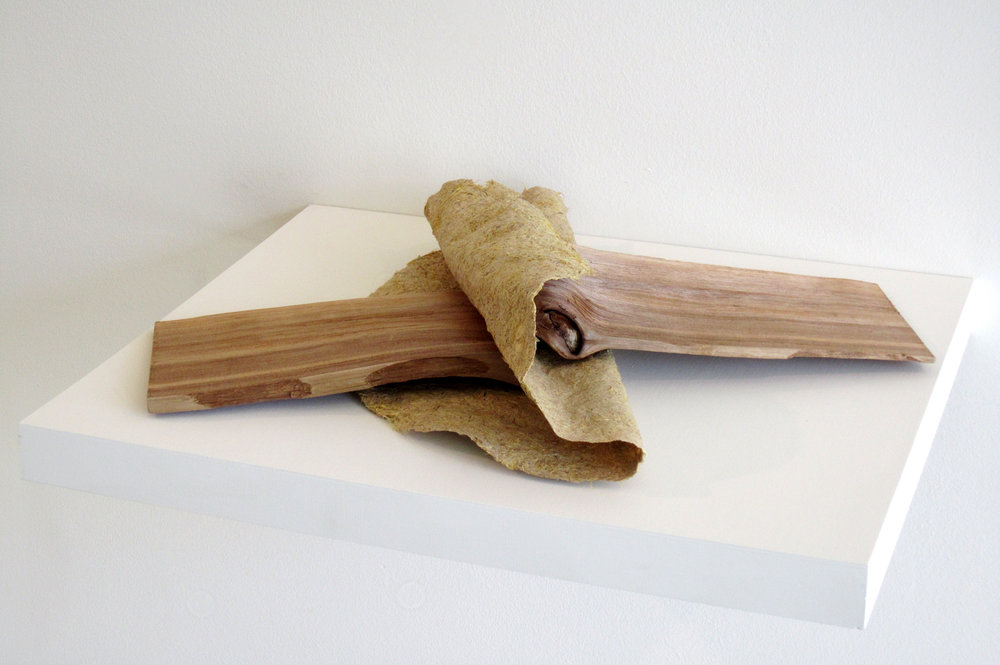 "MOLLY SMITH   Ebb,  2012, corn husk, cat tail and cedar, 4"" x 15"" x 20"""