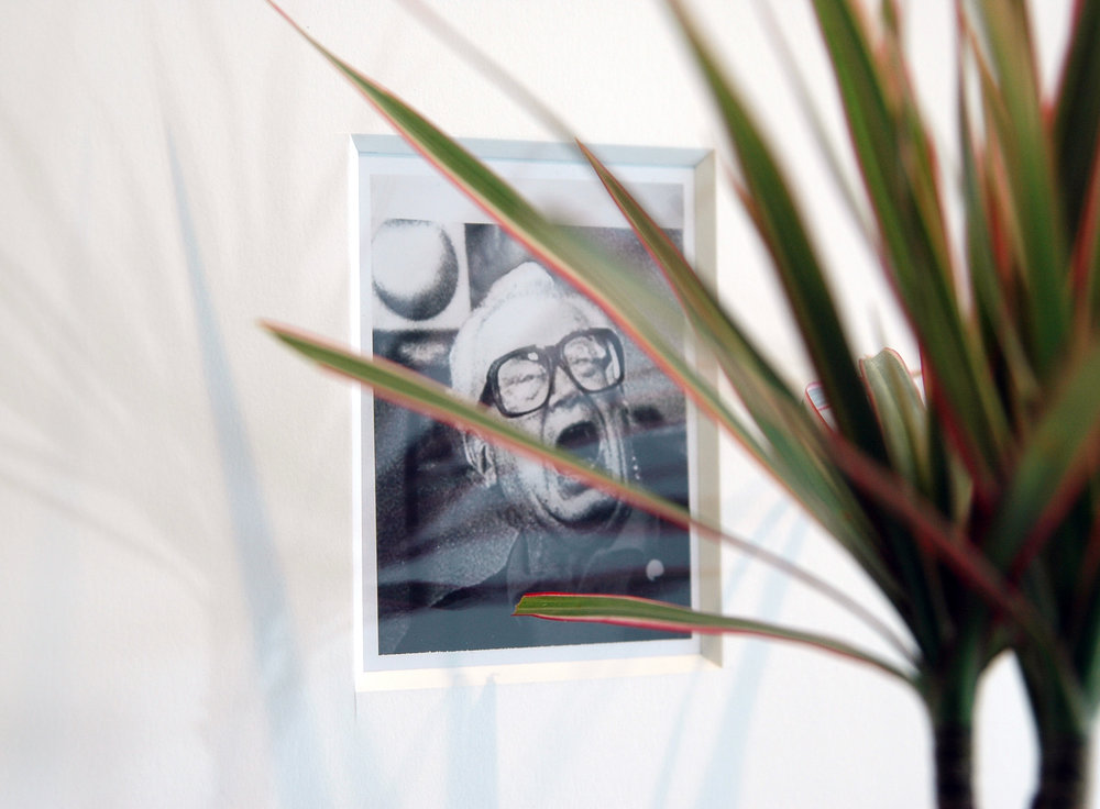 "JOSHUA PIEPER   Dead and Alive (Harry) , framed archival Polaroid, shelf, tri-colored dresena plant, 24.5"" x 16.25"" x 9.75"", 2012"
