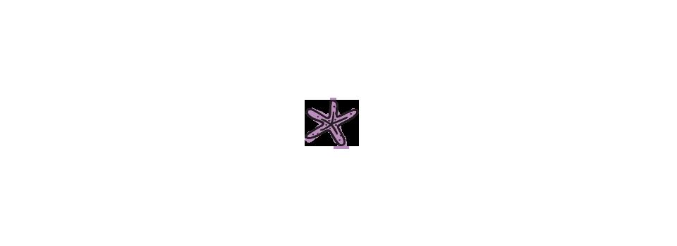 STARFISH-1.png