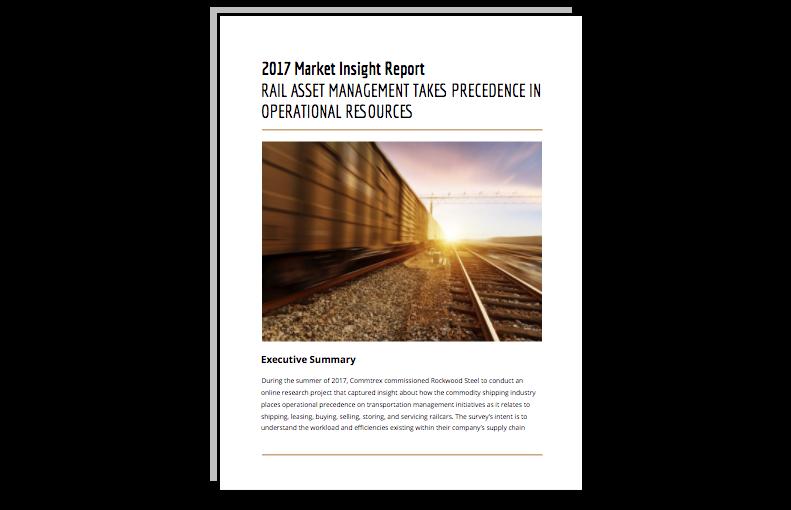 2017 market insight report thumbnail.png