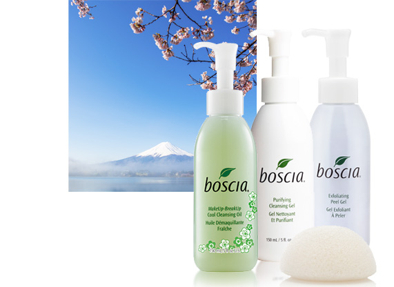 CLICK HERE FOR BOSCIA WEBSITE