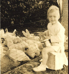 Here I am at about age three or four, having a conversation with a group of hens from Little Grandma's flock. They're crowding around me more for the corn than the company.