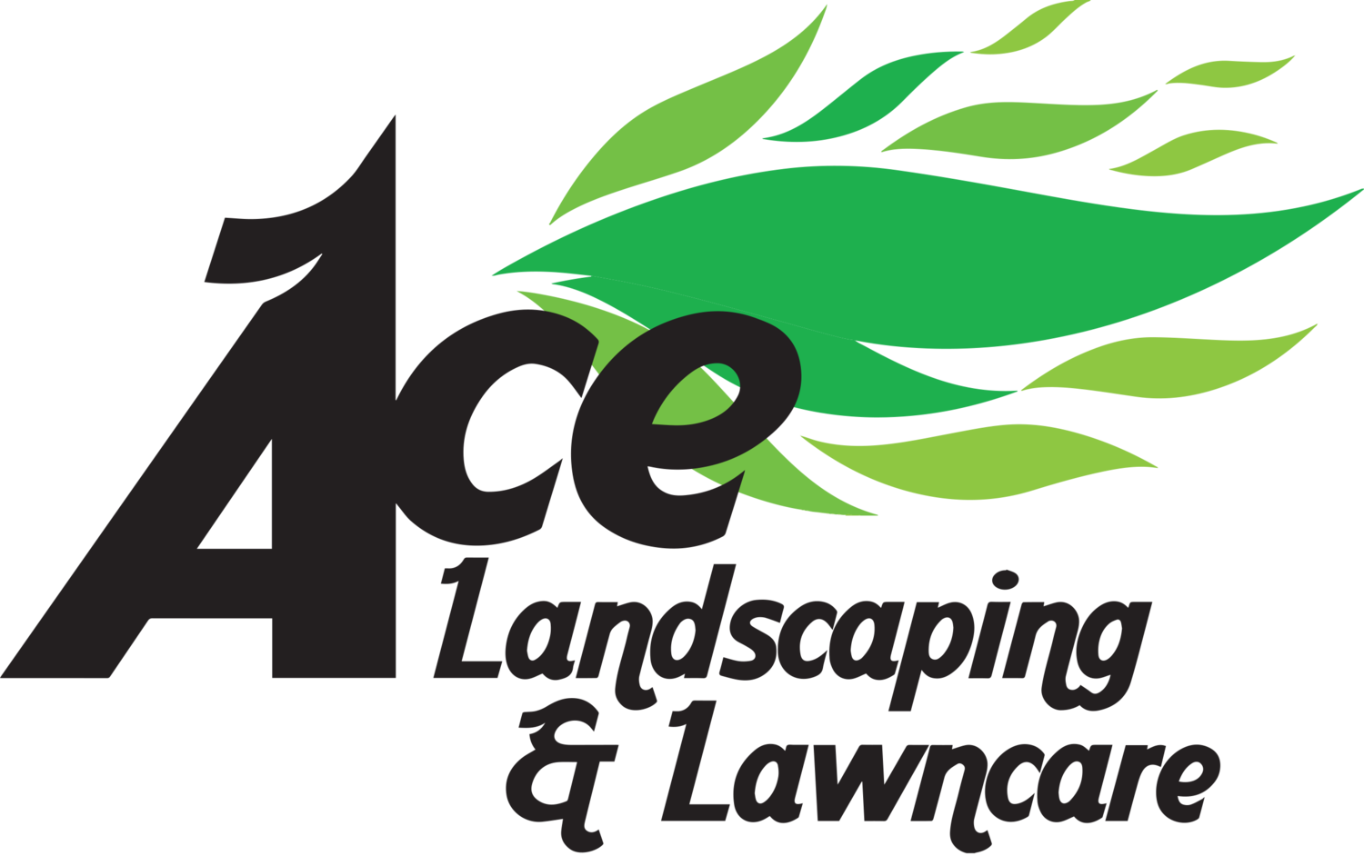 Professional Landscaping and Lawn Care Services
