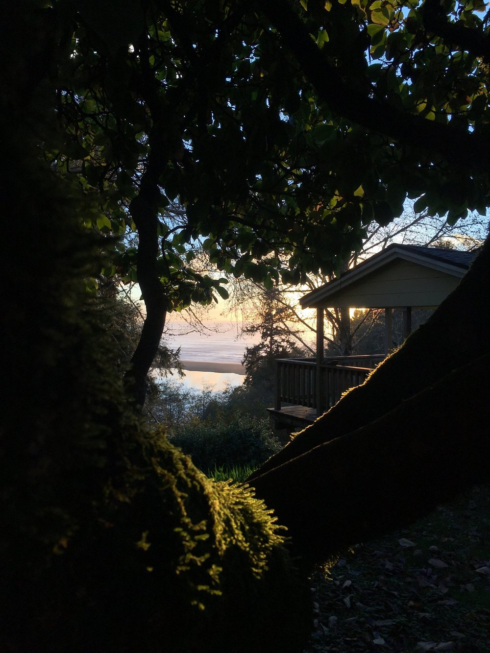 Our secondary vacation rental overlooks the mouth of the Klamath. It offers guests privacy and an unbelievable view. For more information on this please ask.