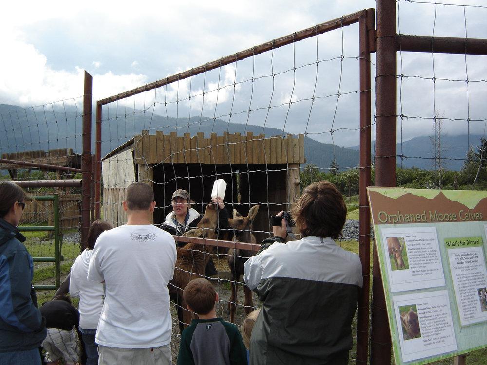 Group at Alaska Wildlife Conservation Center