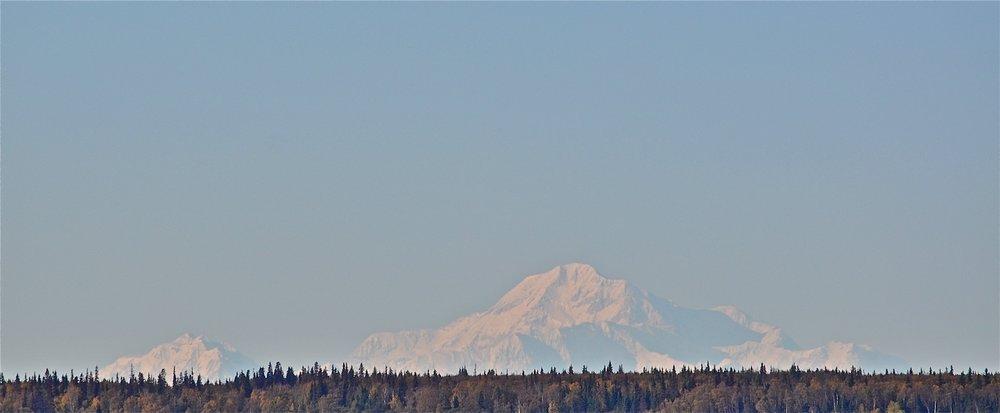 Denali mountain view