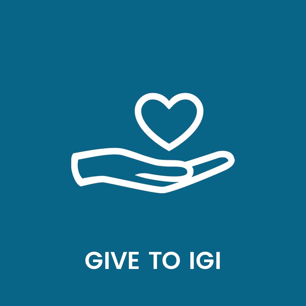 igi_brand_launch_graphics_web_get_involved4.jpg