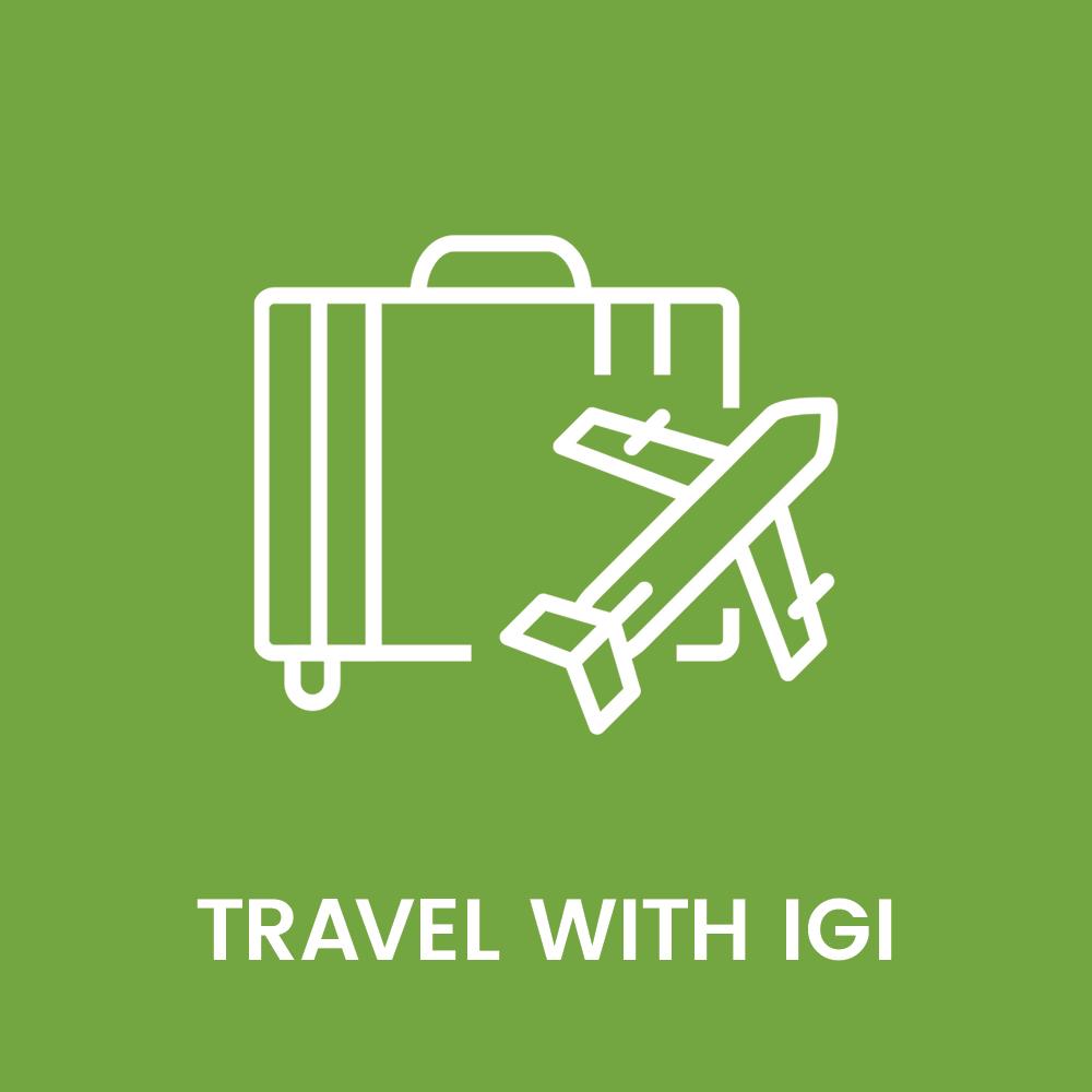 igi_brand_launch_graphics_web_vision_statements_travel.jpg