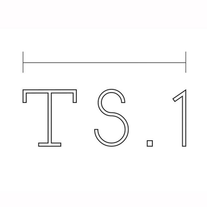 TS1 Website.jpg