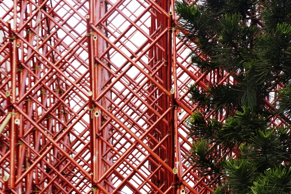 Bamboo_red_sculpture - small.jpg
