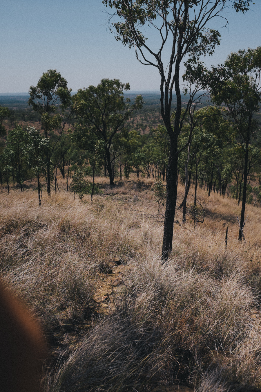 Australia2015klein-375.jpg