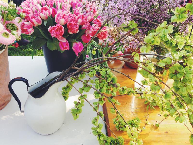 fiori.jpg