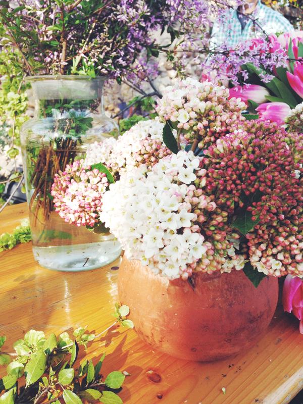 fiori_3.jpg