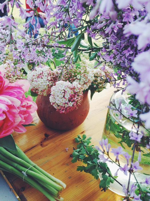 fiori1.jpg