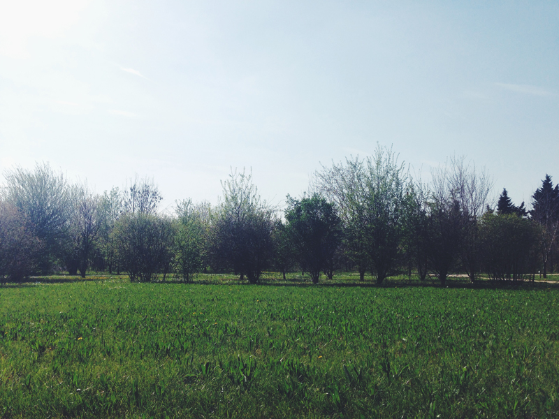 Villa_1.jpg