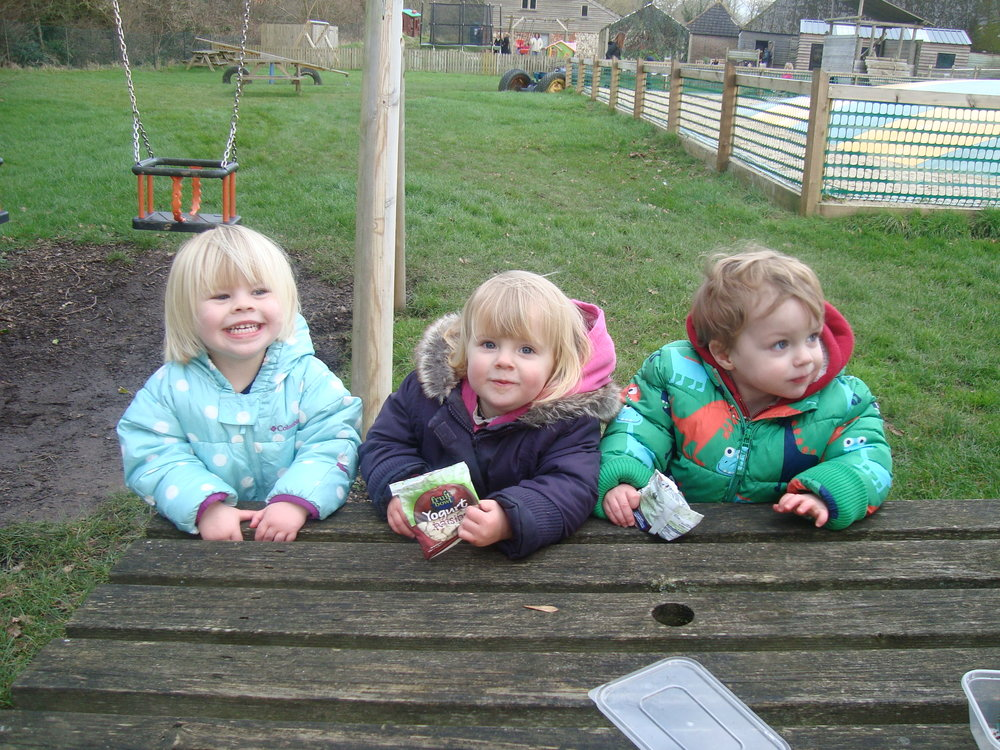 Baby First Aid Trainer's daughter and friends at Sussex farm