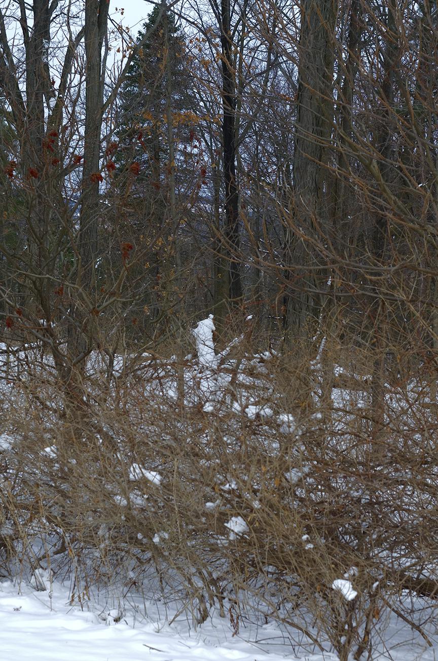 Natural Snowman