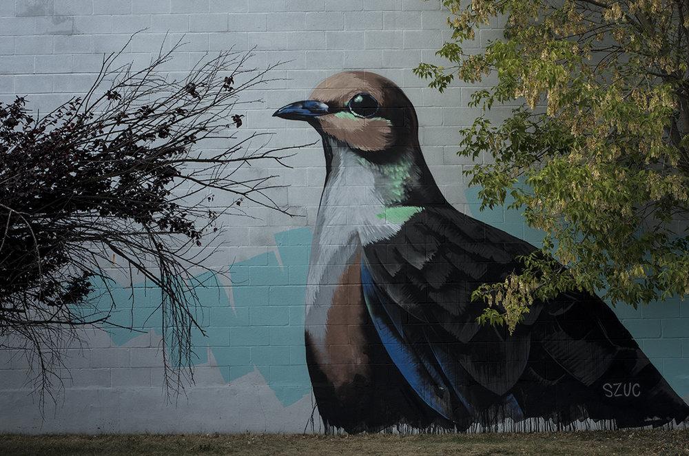 Mural - 2.jpg
