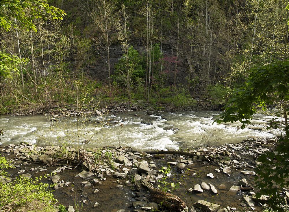 The Creek Itself - 3.jpg