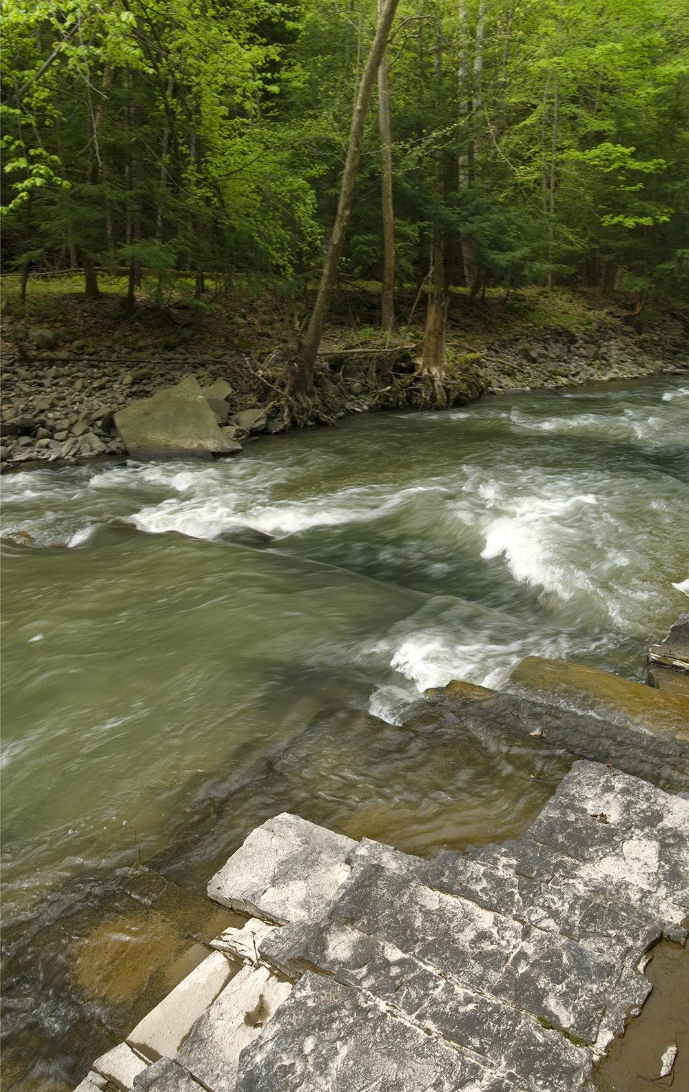 The Creek Itself - 5.jpg
