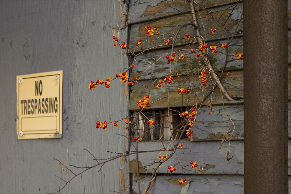 No Trespassing - 1.jpg