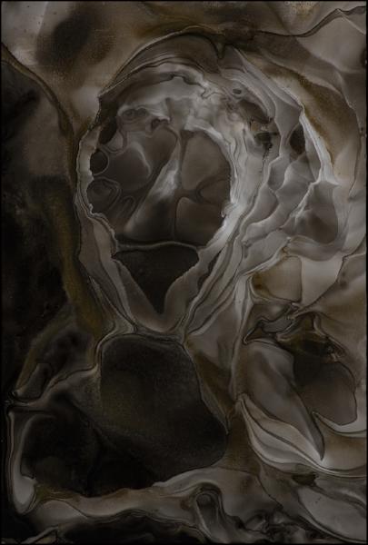 """The Shroud   (8 3/8 x 12 3/8"""") 85."""