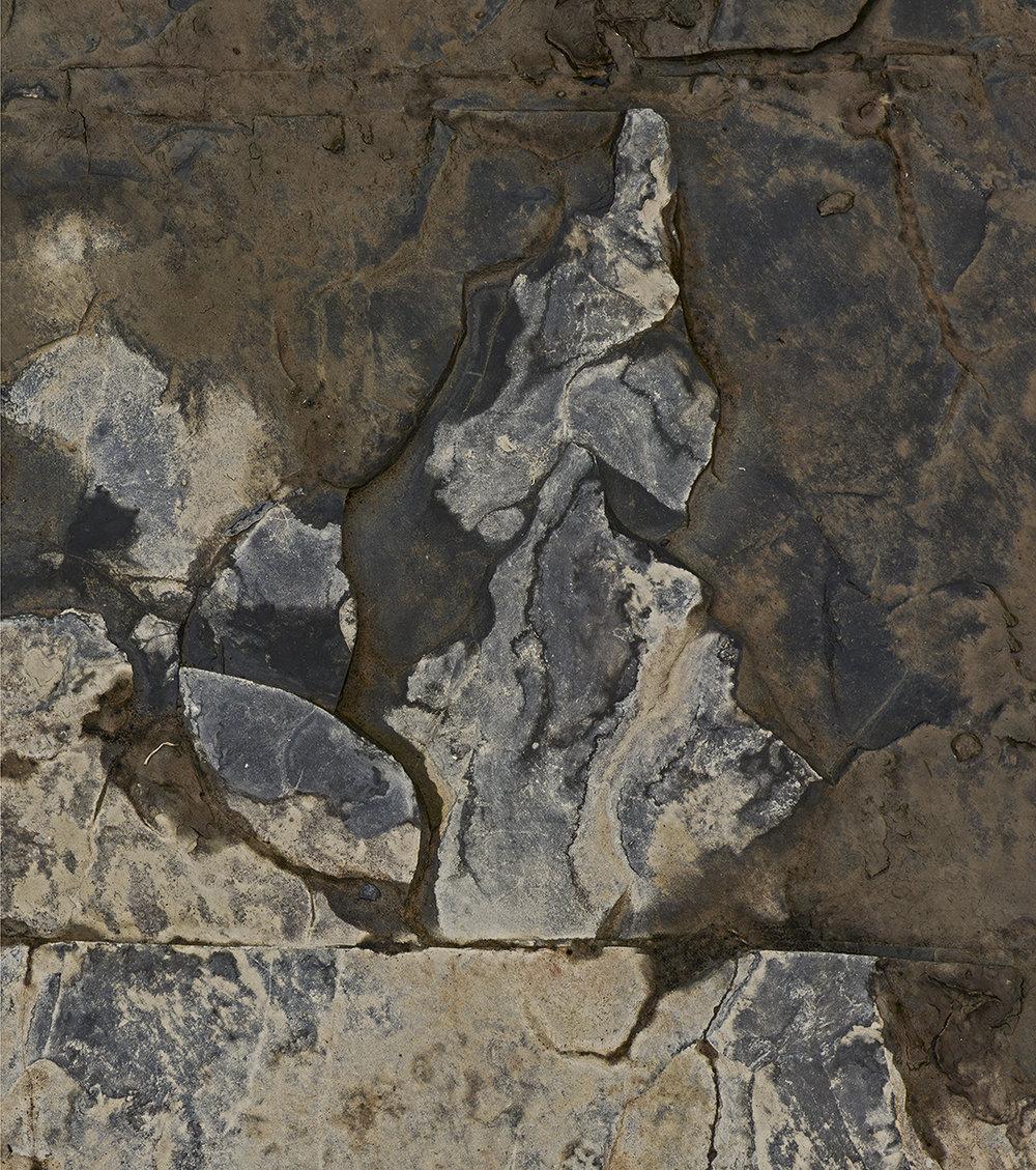 Creek Sediment - 2 - Detail.jpg