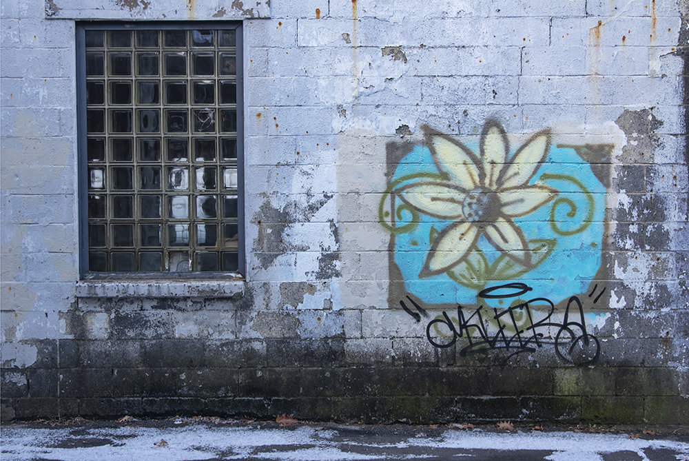 Alley Flowers - 2 .jpg