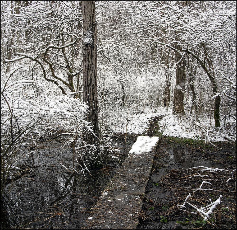The Path - II
