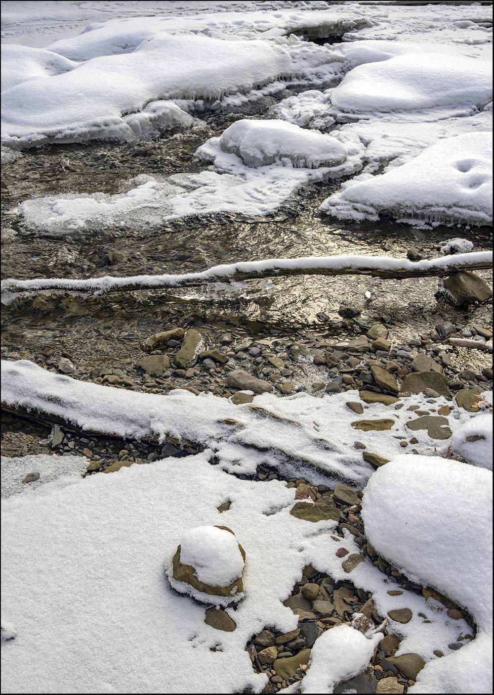 The Little Creek - 2.jpg