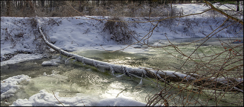 The Little Creek - 5.jpg