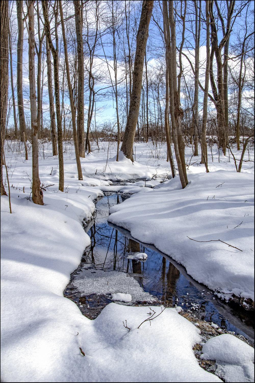 The Little Creek - 10.jpg