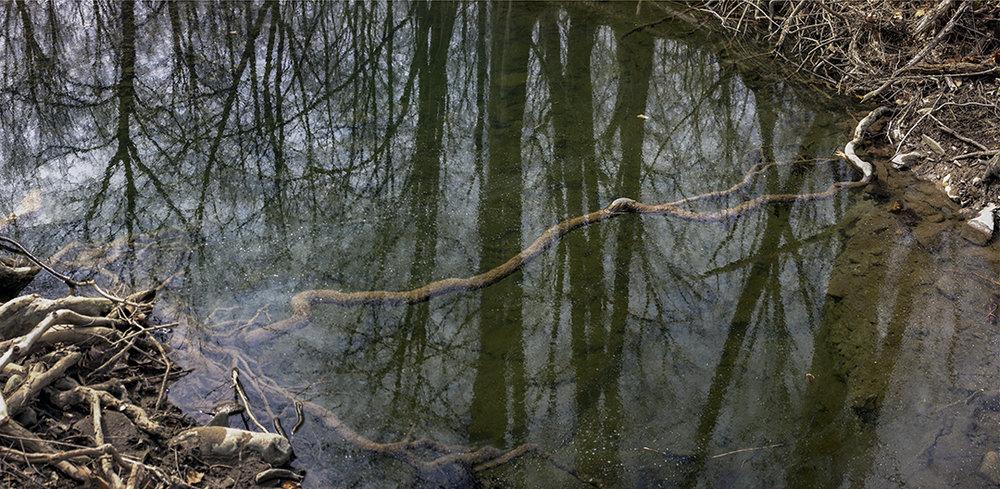 Under Water - Final.jpg