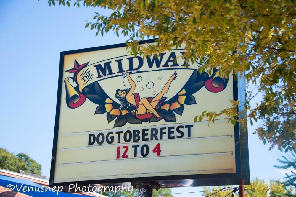 Dogtoberfest - May the best costume win!