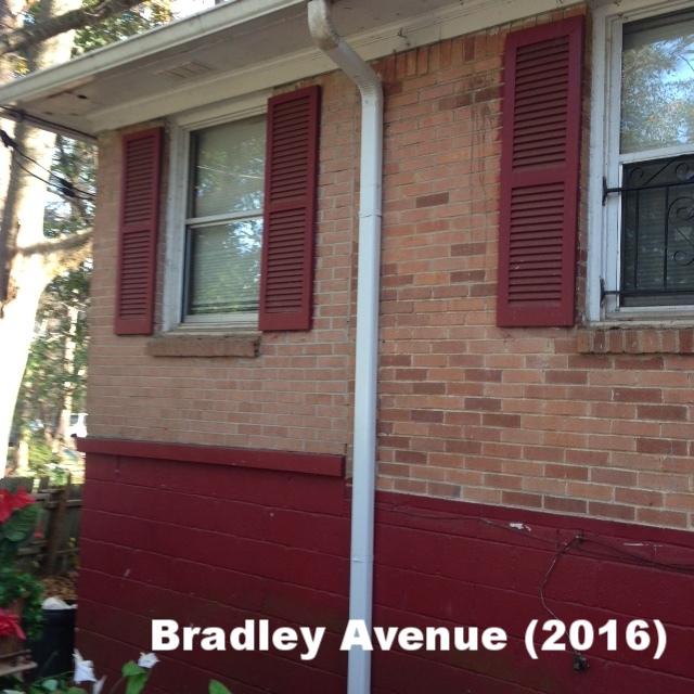 Bradley (Rivers) 2016(8).JPG