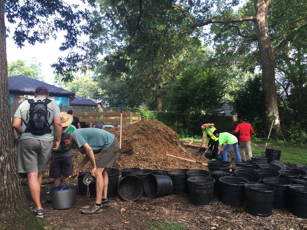 Tree Planting in EAV - Volunteers mulching freshly planted trees in Brownwood Park.