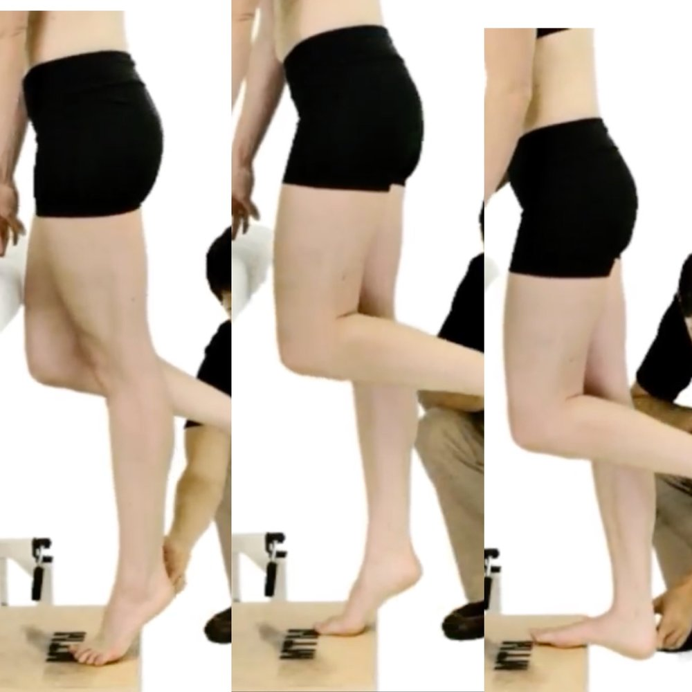 PhysioU - Eccentric Heel Raises