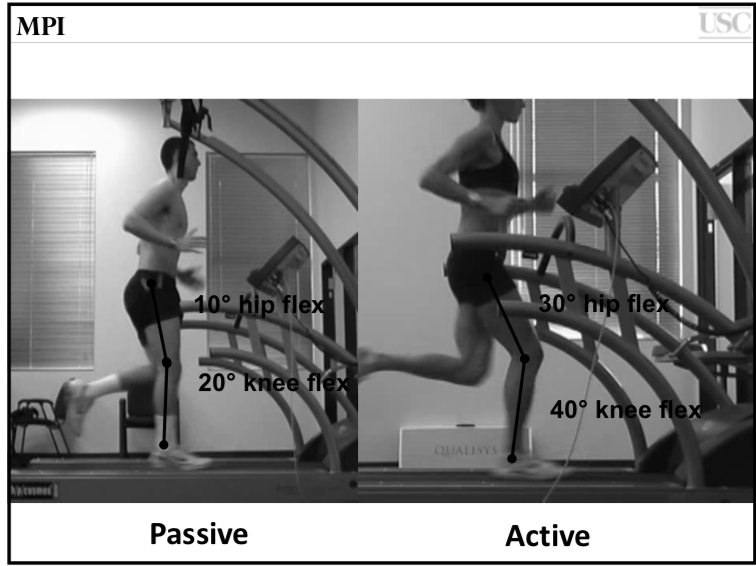Powers et al: Movement Performance Institute (L picture faulty; R- optimal )