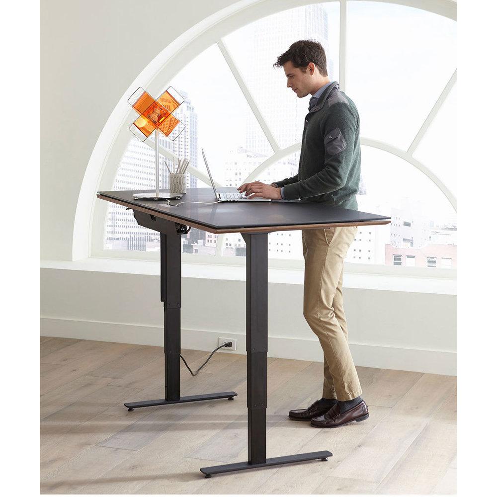 BDI Standing Desk