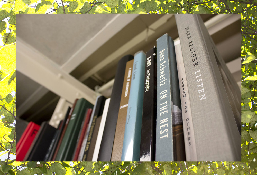 books_n_tree-2.jpg