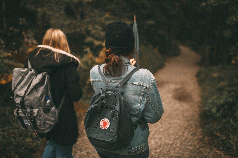backpack-environment-forest-590798.jpg