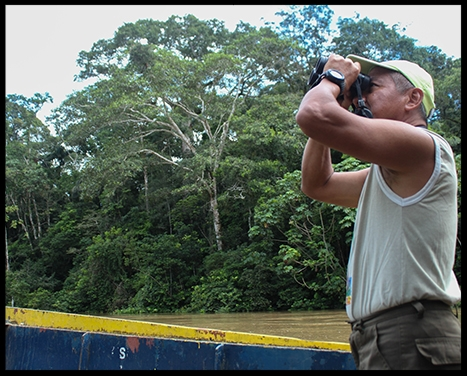 "- Jose Macanilla is one of the Quichua people. He has always called the Ecuadorean Amazon home, and he has seen the changes his land  has endured.Growing up in a village near the enormous Napo River in Ecuador's Amazonas Oriente region, Macanilla was brought up in the traditional aboriginal way, learning to know and respect the land, something he says is paramount in Quichua tradition.That upbringing formed a set of beliefs that came into jarring conflict with his work as an oil company employee, and drove him on to become a nature guide at the Tiputini Biodiversity Station, where he applies a lifetime of acquired skill and knowledge to a job he clearly loves.""The knowledge, I learned first-hand from my grandparents,"" he says. ""For years, I would walk through the forest with no shoes, just like my grandpa. He would always warn me to be very careful of bullet ants, dangerous snakes and any plants with spikes. So you needed to look carefully.""Macanilla's relationship with the rainforest is apparent when you spend time there with him. Whenever he stops and puts a finger to his mouth, you can't help but follow his lead and hope you're quick and quiet enough to catch a glimpse of whatever he sees.Macanilla has worked at Tiputini for a decade, showing visitors the flora and fauna. His connection to the rainforest springs directly from his Quichua roots. As the grandson of a village shaman, he says, he learned early that the jungle provides many remedies.""He was able to make a diagnosis of whatever was making a person sick,"" Macanilla says. ""He would make this drink and, as they would drink it, he would look to the spirits for the person. He would then go into the jungle and find medicine. He was a leader and very important person to the community.""This upbringing, coupled with years in the jungle, gave Macanilla his bedrock understanding of the region – and a foreboding that things are not going to stay the way they are.The oil boom gripping the Yasuni region has brought many indigenous people into the industry, as companies have hired people from surrounding communities to work on projects in the area.The income and modern amenities the oil companies bring are welcomed by many, but those who see beyond the short-term wealth have misgivings, Macanilla says.When he worked for the oil company, he says, he was struck with a crisis of conscience, as he looked around and noticed that the indigenous people weren't being helped; they were being exploited.""I've seen Quichua or indigenous that work with machetes,"" he says. ""There's never people working in the office with computers.""At the same time, the impact of oil on the environment ""made me sad and I changed my profession.""""And now, I get to be with animals. And I like the air, and it's good, and there's no pollution or contamination."